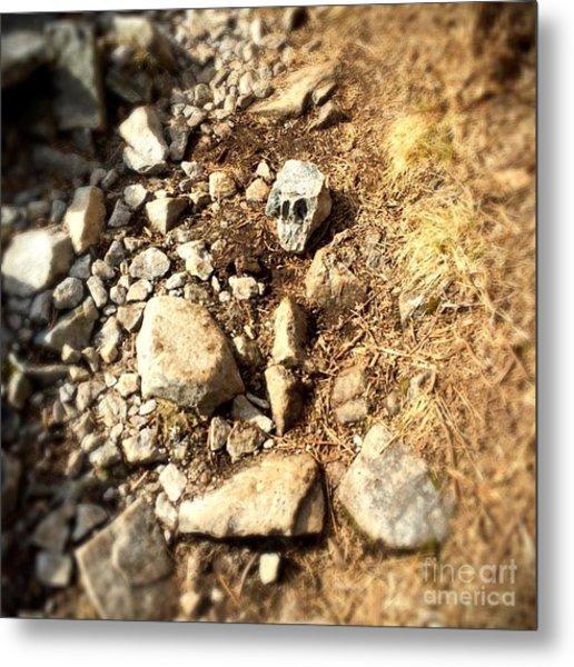 Rock Skull Metal Print