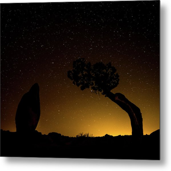 Metal Print featuring the photograph Rock, Tree, Friends by T Brian Jones