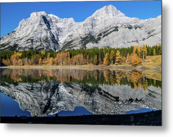 Rockies From Wedge Pond Under Late Fall Colours, Spray Valley Pr Metal Print