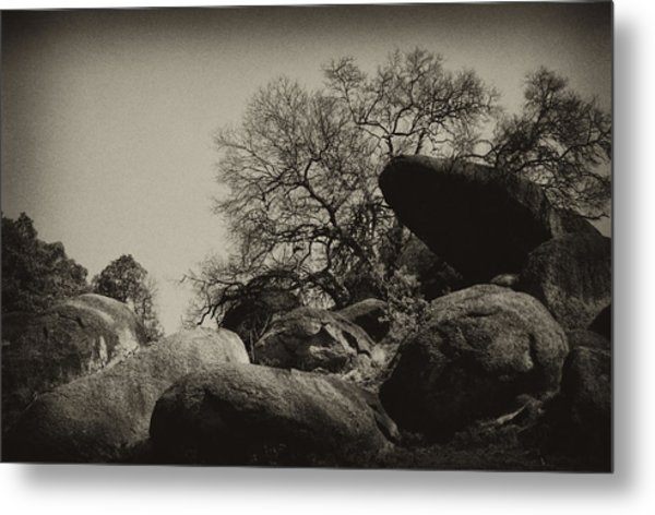 Rocks Metal Print by Amarildo Correa