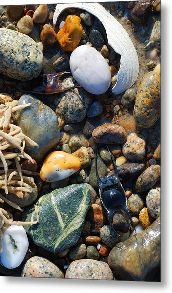 Rocks And Shells On Sandy Neck Beach Metal Print
