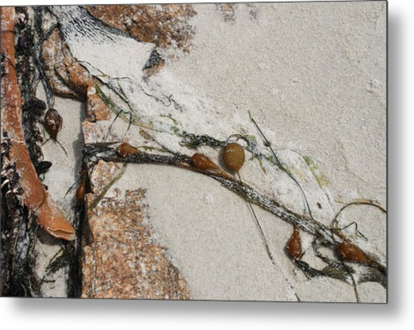 Rocks Longside Metal Print