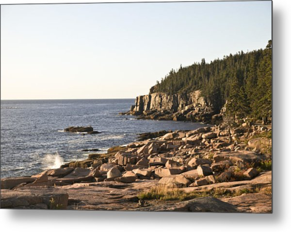 Rocky Coast Of Acadia Metal Print by Frank Russell