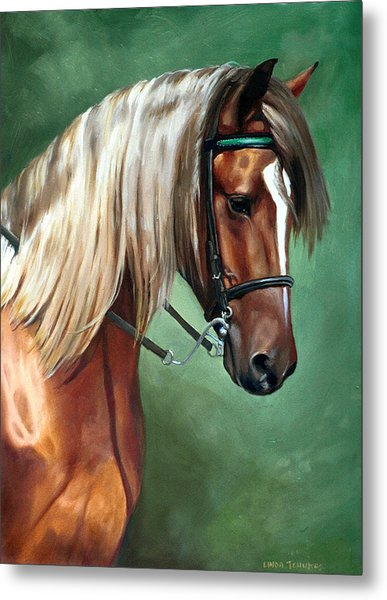Rocky Mountain Horse Metal Print