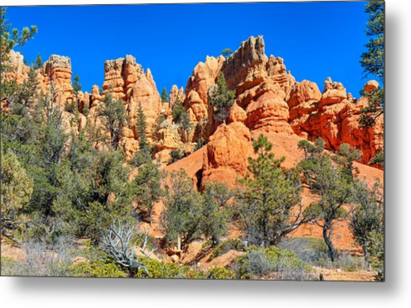 Metal Print featuring the photograph Rocky Range At Red Canyon by John M Bailey