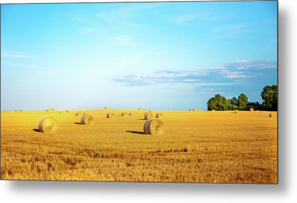 Metal Print featuring the photograph Rolled Hay by Onyonet  Photo Studios