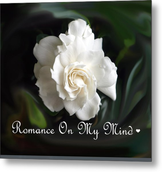 Romance Rose Metal Print by Kim