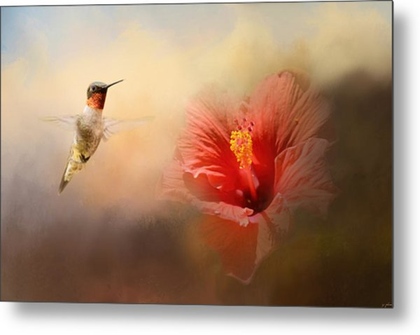 Romancing The Hibiscus Metal Print