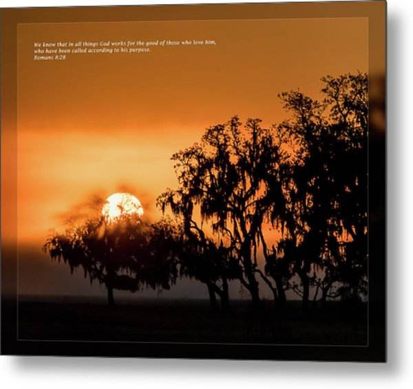 Metal Print featuring the photograph Romans 8 28 by Dawn Currie