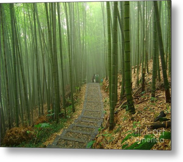 Romantic Bamboo Forest Metal Print