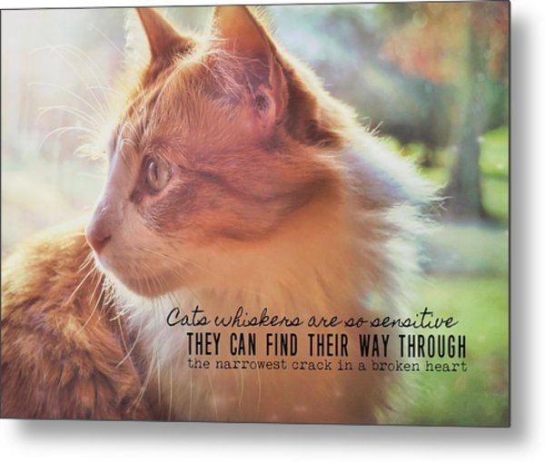 Ronald Quote Metal Print by JAMART Photography
