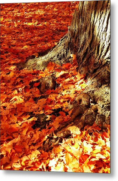 Rooted In New England Metal Print