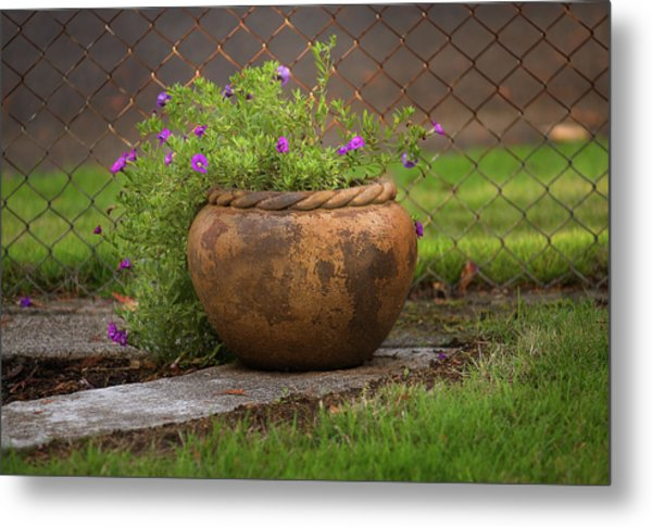 Rope Pot Flowers Metal Print
