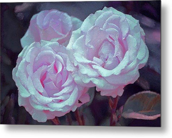 Rose 118 Metal Print
