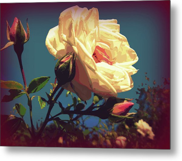 Rose Facing The Sun Metal Print