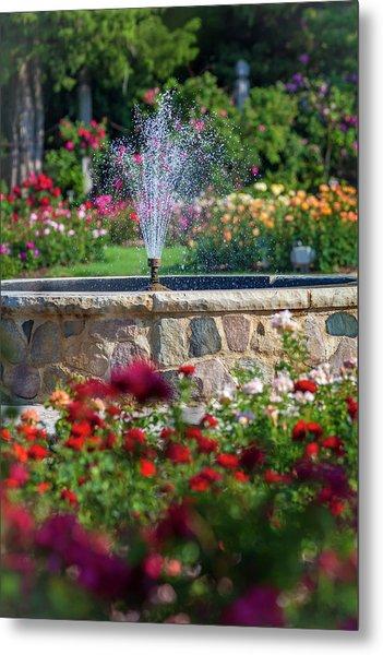 Rose Fountain Metal Print