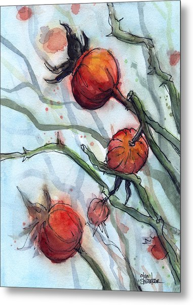 Rose Hips Abstract  Metal Print