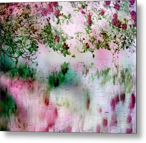 Rose Reflections Metal Print