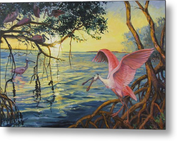 Roseate Spoonbills Among The Mangroves Metal Print by Dianna Willman
