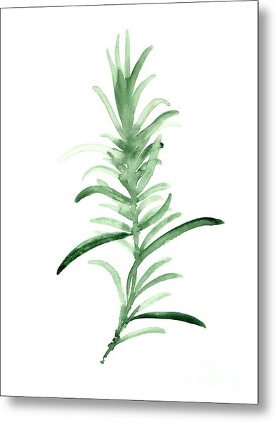 Rosemary Green Watercolor Foodart Metal Print