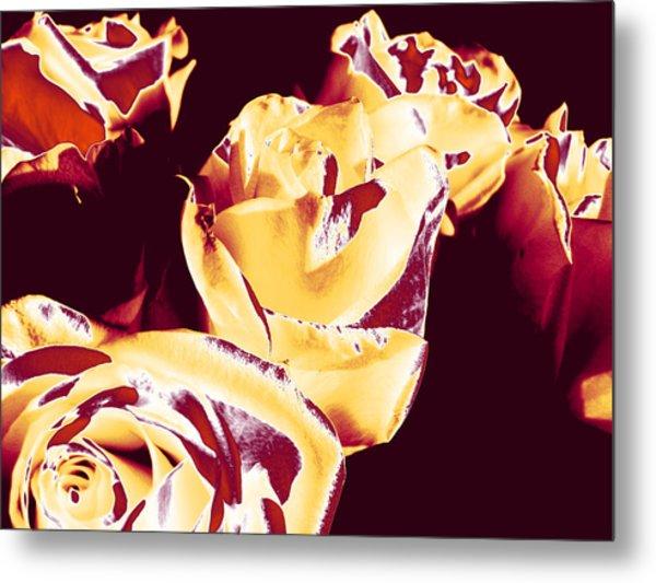 Roses #1 Metal Print
