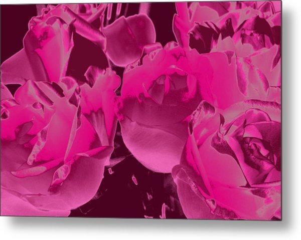 Roses #5 Metal Print