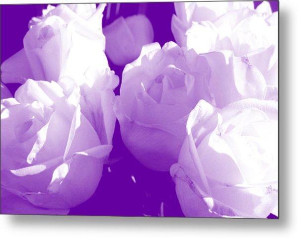 Roses #7 Metal Print