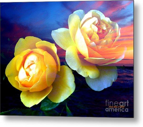 Roses Basking In A Ocean Sunset Metal Print
