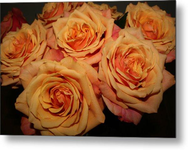 Roses Metal Print by Linda Hardin