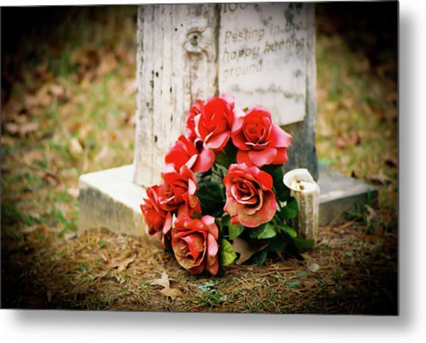 Roses On A Grave Metal Print by Jonathan  Daniels