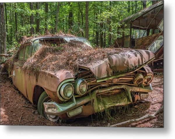Rotting Classic In Color Metal Print