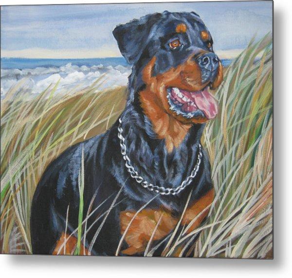 Rottweiler At The Beach Metal Print