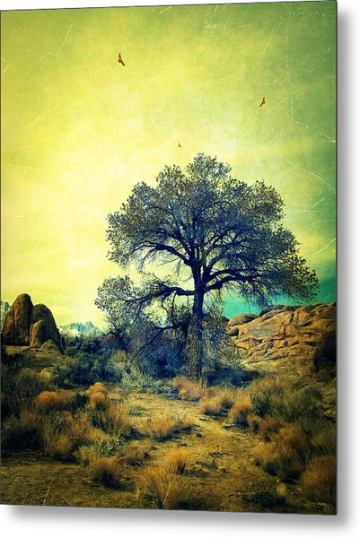 Rough Terrain Metal Print