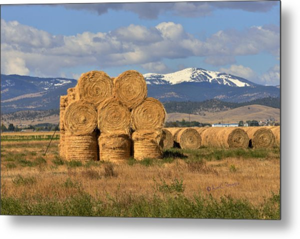 Round Hay Bales And Mountain Metal Print