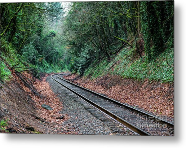 Round The Bend Metal Print