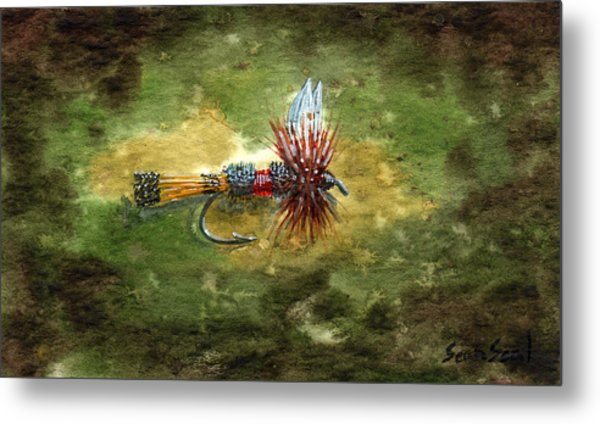 Royal Coachman Metal Print