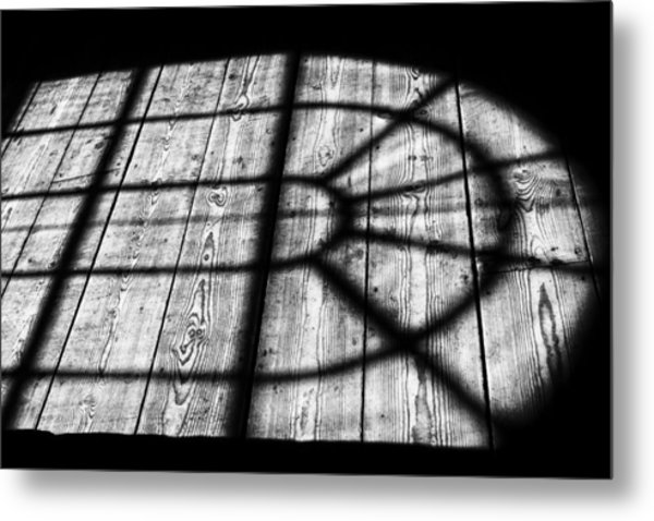 Royal Shadow Metal Print
