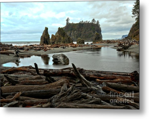 Ruby Beach Driftwood Metal Print