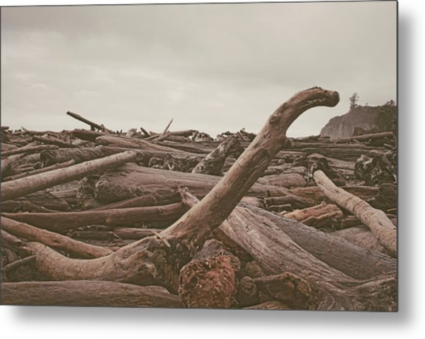 Ruby Beach No. 10 Metal Print