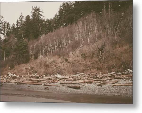 Ruby Beach No. 18 Metal Print