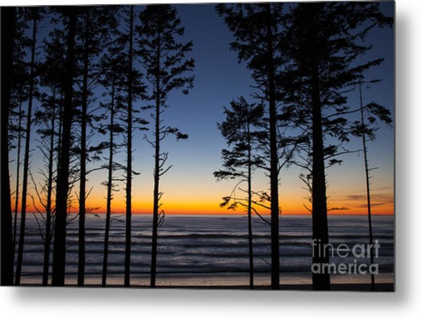 Ruby Beach Trees #4 Metal Print