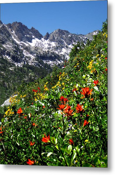 Ruby Mountain Wildflowers - Vertical Metal Print