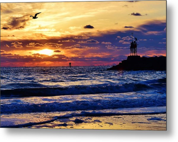 Rudee's Beauty Metal Print