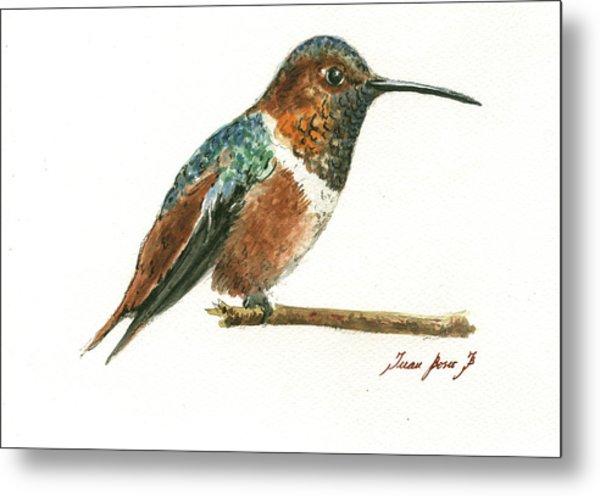 Rufous Hummingbird Watercolor Metal Print