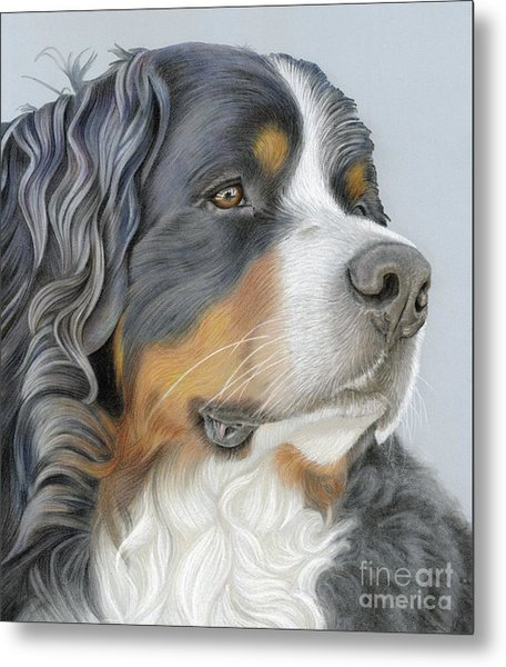Metal Print featuring the painting Regal And Relaxed by Donna Mulley