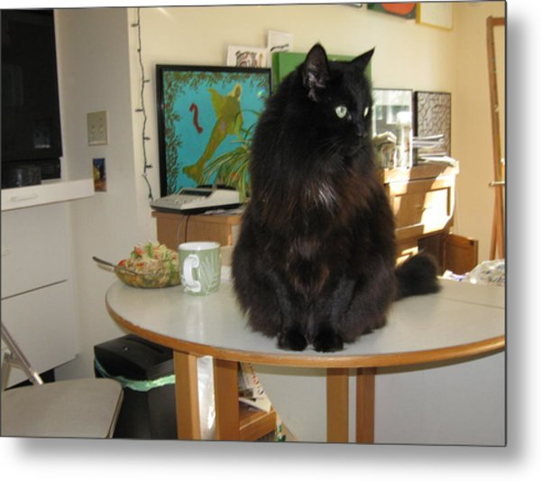 Rumbles Looks Left Metal Print