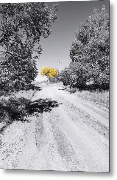 Rural Autumn Splash Metal Print