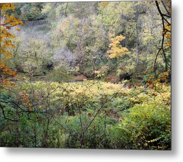 Rural Autumn West Virginia Landscape Metal Print by Terry  Wiley