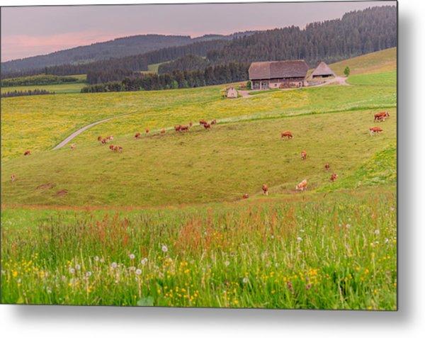 Rural Black Forest Landscape Metal Print