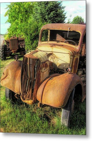 Rust Buddies Metal Print